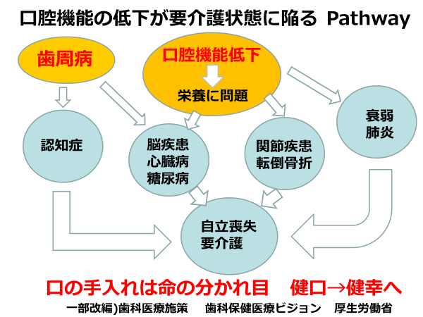 pathway_zenshin