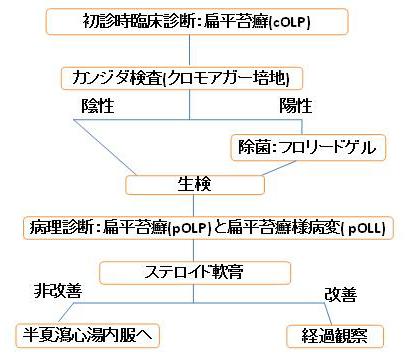 oral_lichen_planus1